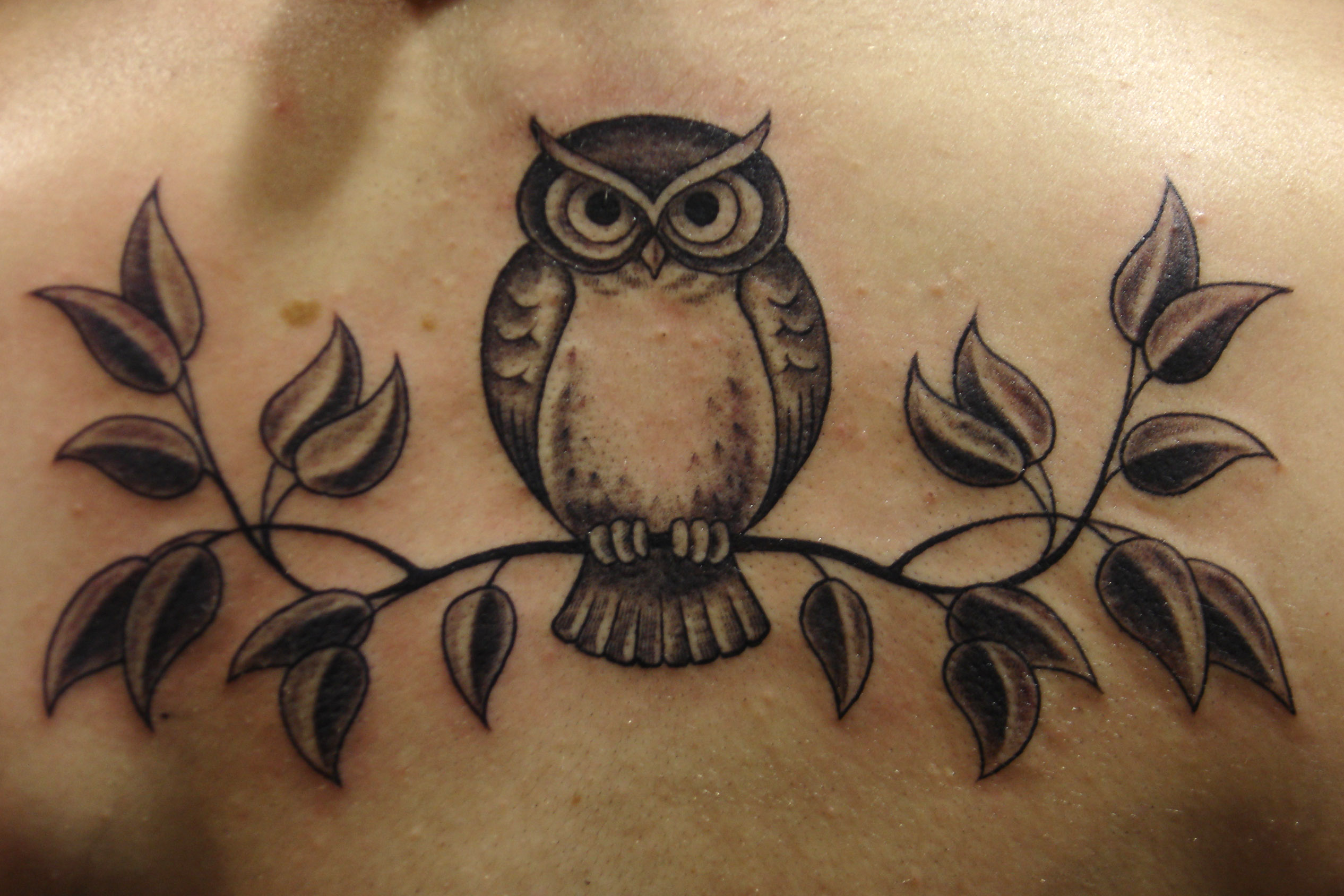 Фото татуировок совы для девушек