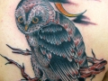 moon-and-owl-tattoo