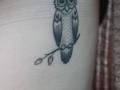 owl-tattoed