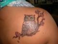 small-owl-tattoos