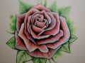 rose_2_by_itchysack-d33uzu6