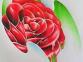 rose_doodle_by_captaingeordie-d3h0haz