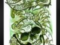 skulldragonsketch_by_willemxsm-d3coy7y