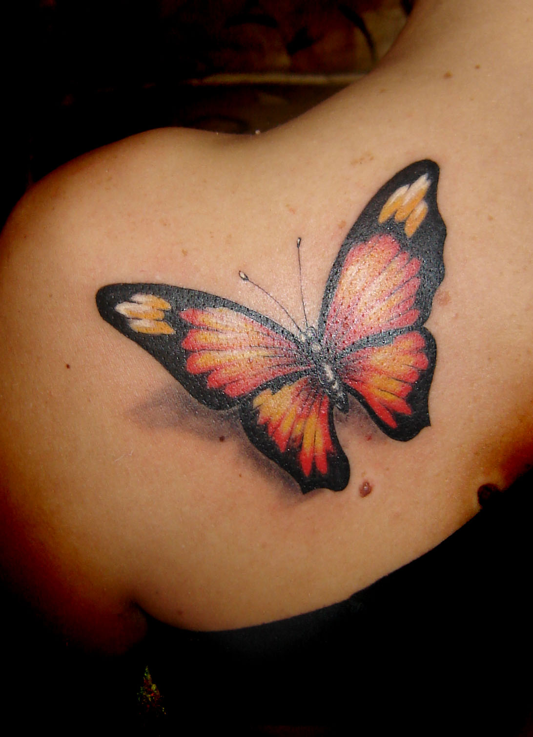 But freedom itself is another meaning of butterfly tattoo design