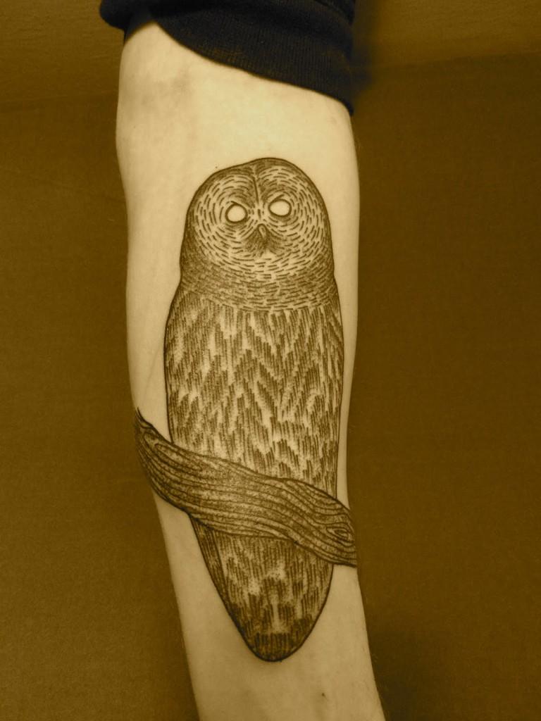 arctic owl tattoo design